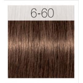 - SCHWARZKOPF - Tinte Igora Royal Absolutes 6/60 Rubio Oscuro Chocolate Natural 60 ml
