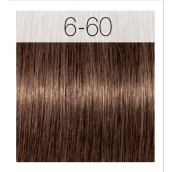 - SCHWARZKOPF - Tinte Igora Royal Absolutes 6/60 Rubio Oscuro Chocolate Natural 60 ml + oxidante gratis