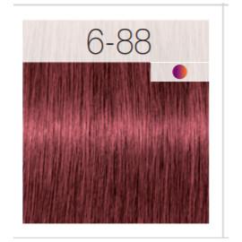 - SCHWARZKOPF - Tinte Igora Royal 6/88 Rubio Oscuro Rojo Intenso 60 ml + oxidante gratis
