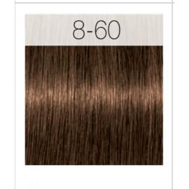 - SCHWARZKOPF - Tinte Igora Royal Absolutes 8/60 Rubio Claro Chocolate Natural 60 ml + oxidante gratis